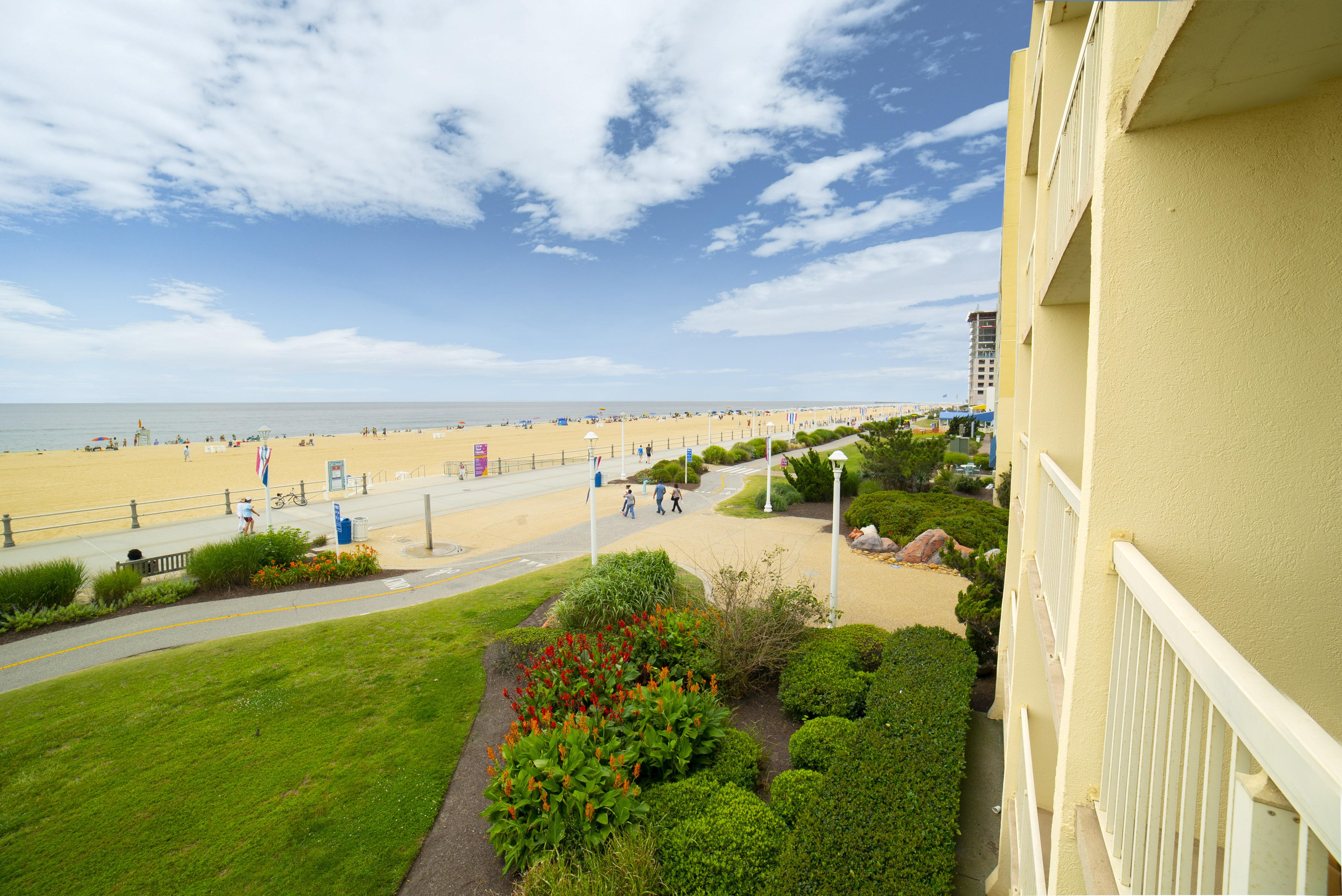 Balcony View 2020